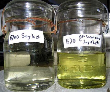 Biodiesel Samples B100/B20