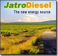 Jatrodiesel