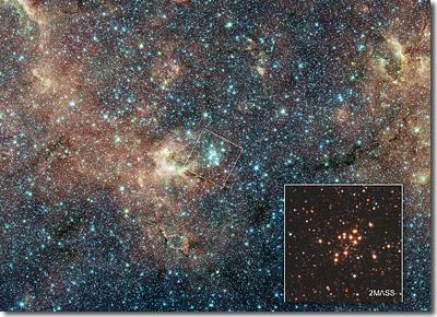 Massive STar Cluster